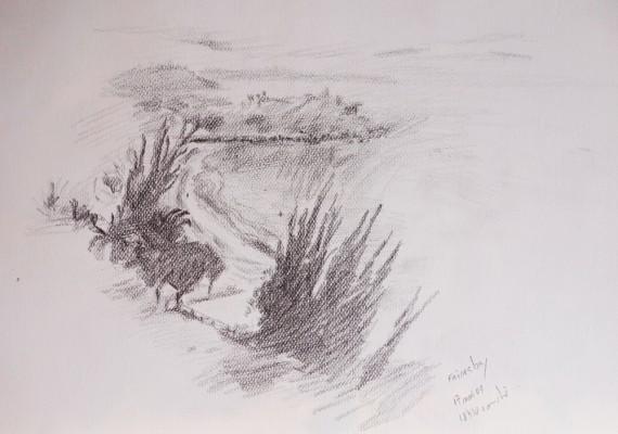 Friars-Bay
